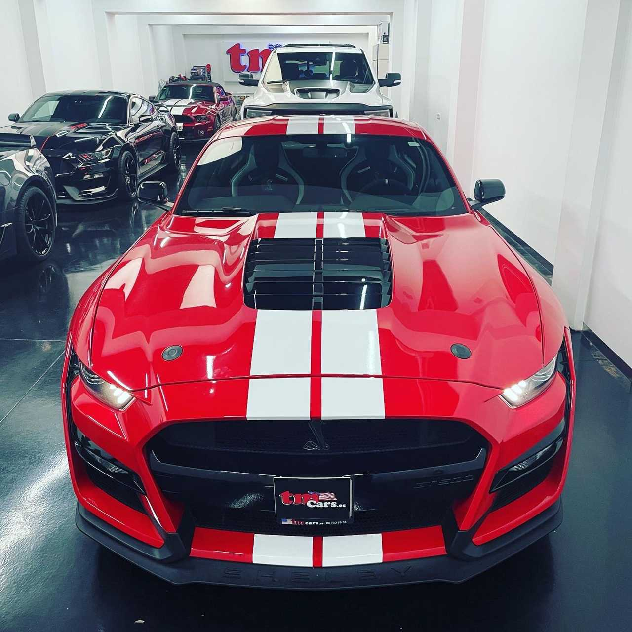 Ford Mustang Ford Mustang GT500 golden ticket!!   - Foto 1