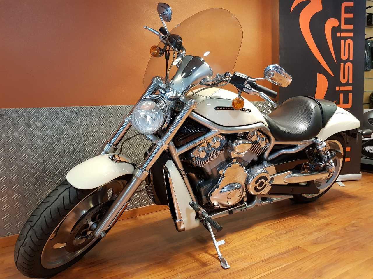 Harley-Davidson VRSC V-Rod   - Foto 1
